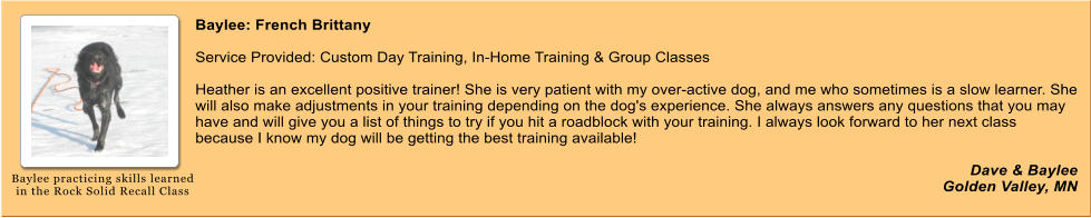 Baylee: French Brittany   Service Provided: Custom Day Training, In-Home Training & Group Classes  Heather is an excellent positive trainer! She is very patient with my over-active dog, and me who sometimes is a slow learner. She will also make adjustments in your training depending on the dog's experience. She always answers any questions that you may have and will give you a list of things to try if you hit a roadblock with your training. I always look forward to her next class because I know my dog will be getting the best training available!  Dave & Baylee Golden Valley, MN Baylee practicing skills learned in the Rock Solid Recall Class