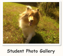 Student Photo Gallery